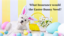 What Insurance would The Easter Bunny need?