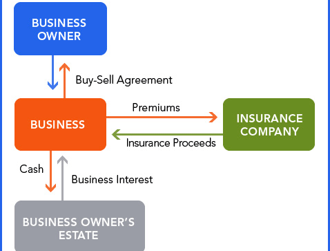 Business protection and continuation entity purchase agreement sometimes called a stock redemption agreement platinumwayz