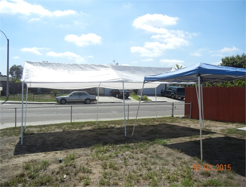 New canopy lot residency