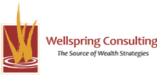 Wellspring Consulting Home