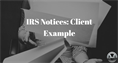 IRS Notices: Client Example