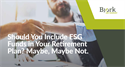 Should You Include ESG Funds? Maybe, Maybe Not.