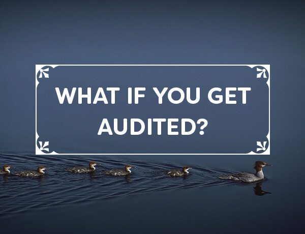 <p>What If You Get Audited?</p>