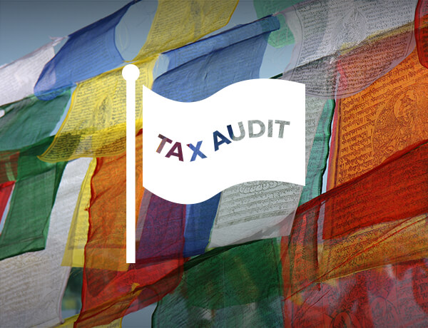 <p>Red Flags for Tax Auditors</p>