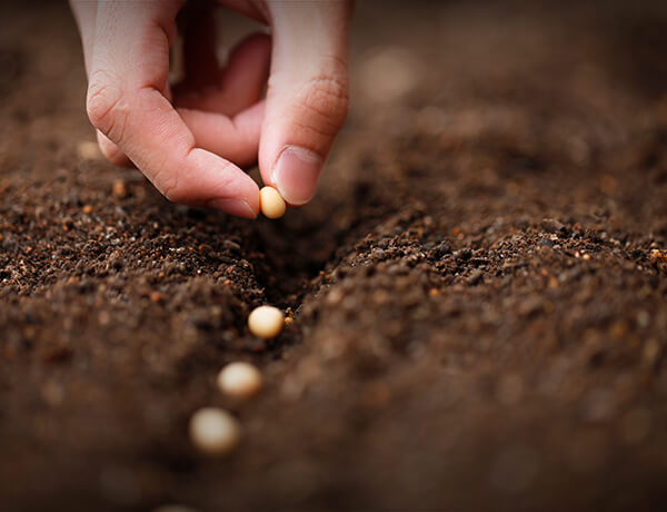 <p>Four Really Good Reasons to Invest</p>