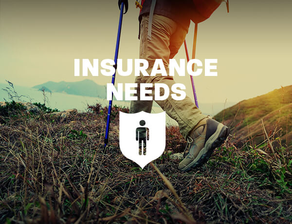<p>Insurance Needs Assessment: When You're Young and Single</p>