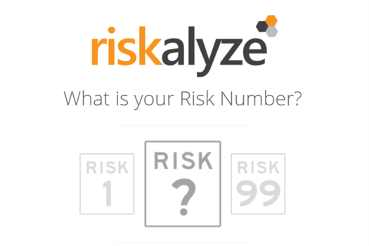 <strong></strong> <strong>Understanding Risk</strong>