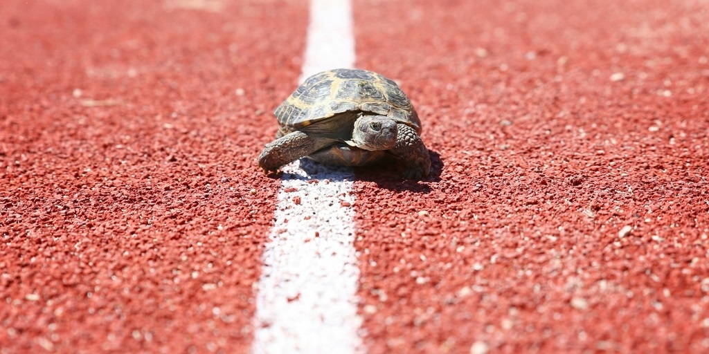 The Tortoise and the Hare: How Fast Investments Can Slow Down Your Goals
