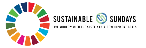 Sustainable Sundays with SDG #16 -Peace, Justice, and Strong Institutions