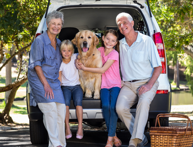 Life and Long Term Care Insurance Services