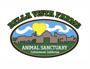 Bella Vista Farms Animal Sanctuary