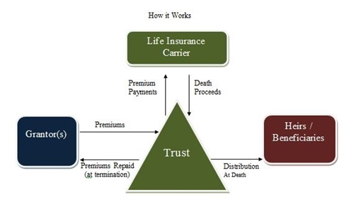 Life Insurance Trusts, Estate Plans, and Asset Protection for Doctors