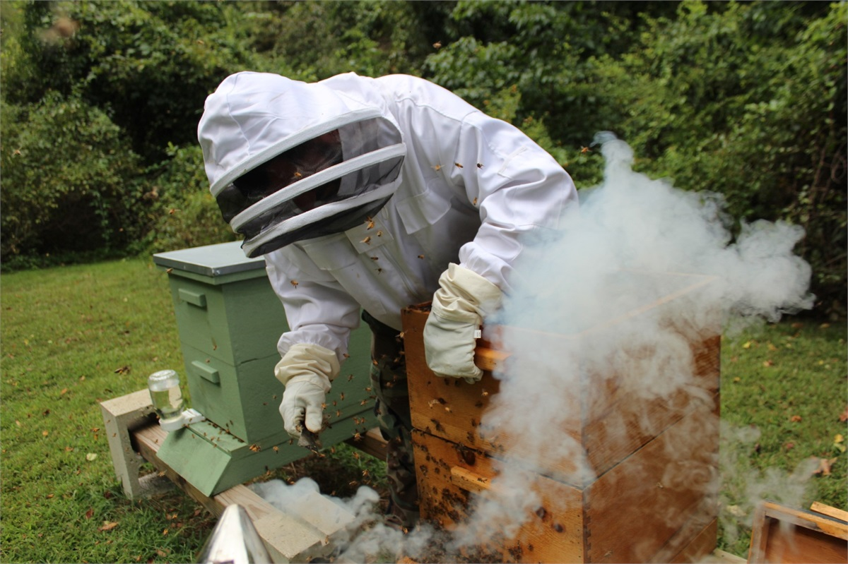 Fall clean-up: it's time to check the honey and your money