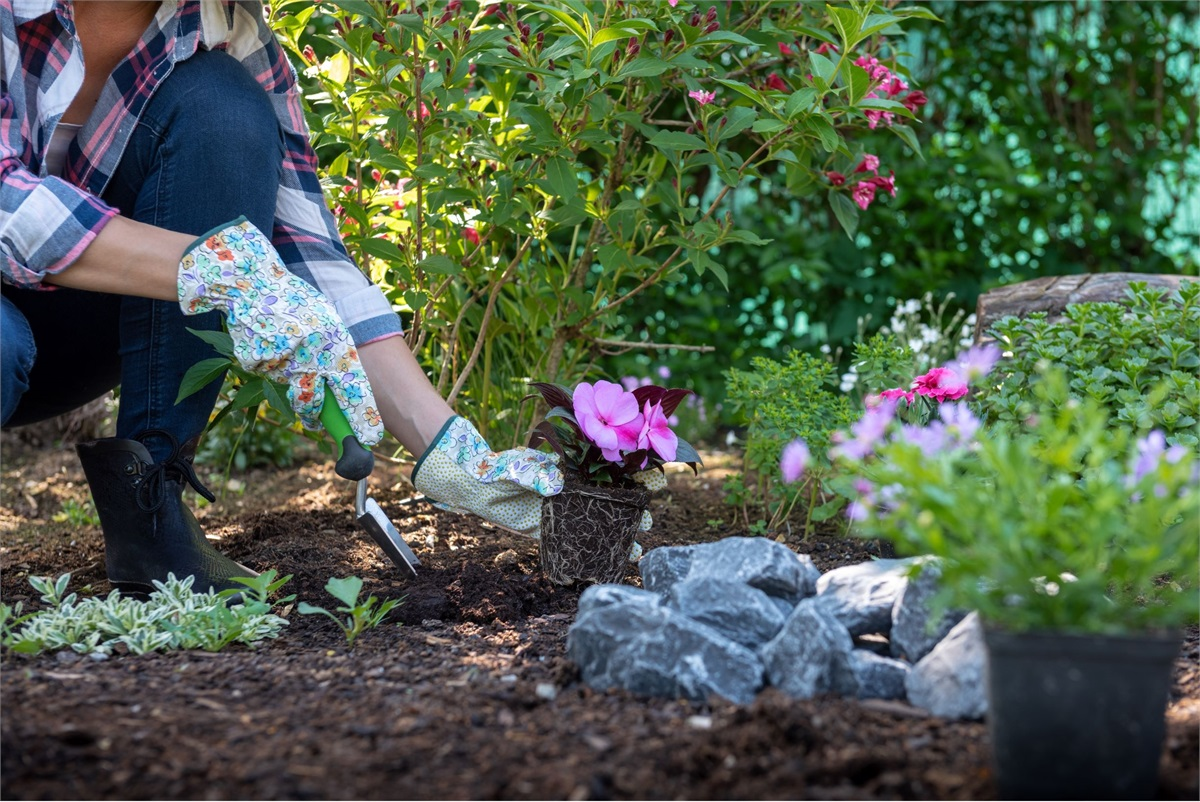 Easy Gardening Tips to Make Your Yard Pop