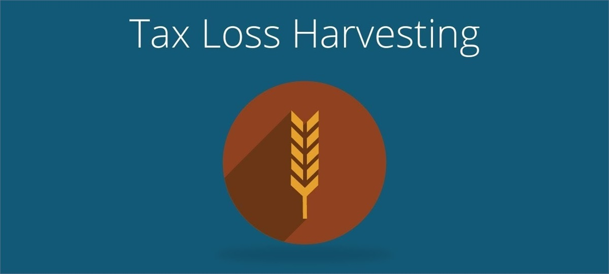 The Basics of Tax Loss Harvesting