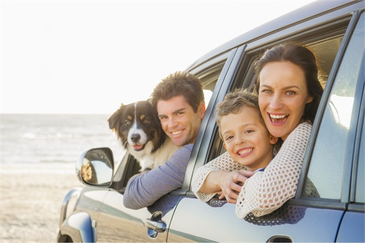 Auto insurance: required and additional protection