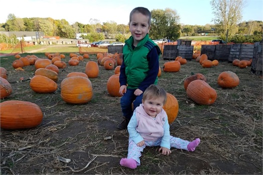 Fall Fun at Schwallier's Country Basket