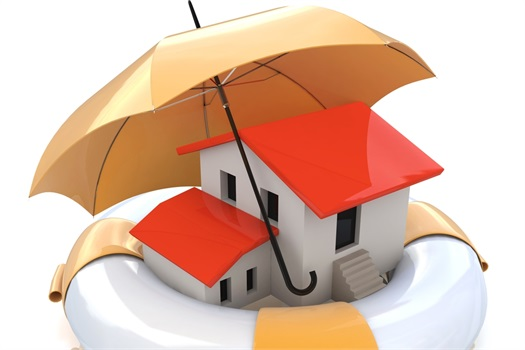 "Property and Casualty Insurance: ""Property Protection"""