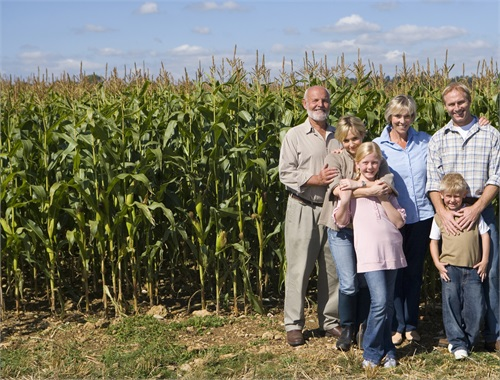 Farm Succession / Transition