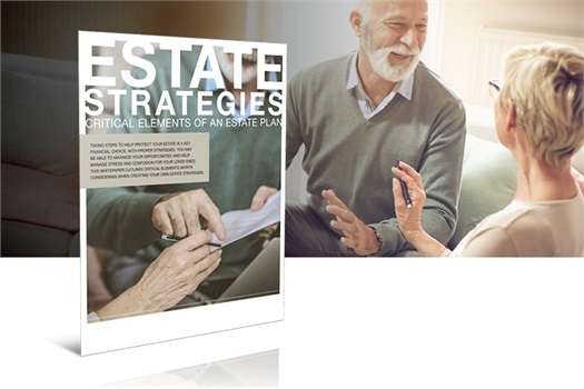 Estate Strategies<br />Critical Elements of an Estate Plan