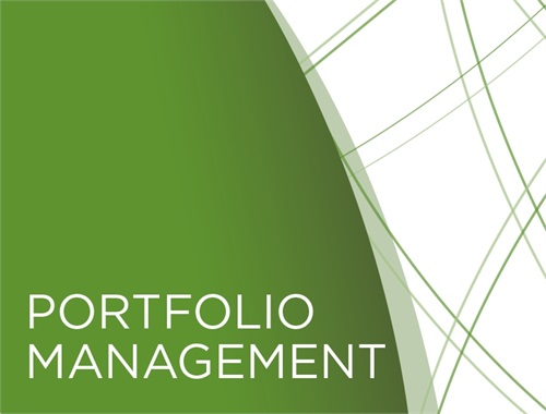 PROFESSIONAL PORTFOLIO MANAGEMENT