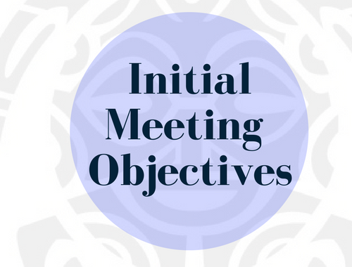 Initial Meeting Objectives