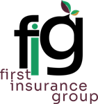 First Insurance Group Home
