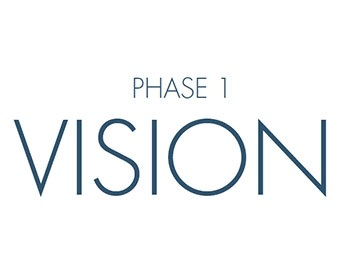 Phase 1 VISION
