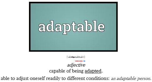 PEOPLE ARE INCREDIBLY ADAPTABLE