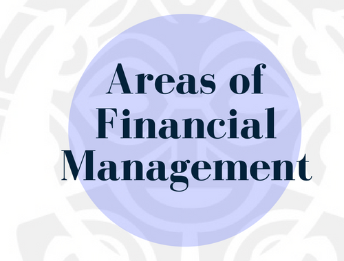 Areas of Financial Management