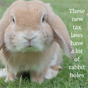 These new tax laws have a lot of rabbit holes