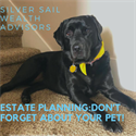 Estate Planning: Don't forget about your pet!