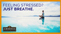 Breathe for Your Life Health and Well Being