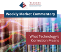 What Technology's Correction Means