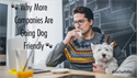 Why More Companies Are Going Dog Friendly