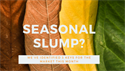 Seasonal Slump?