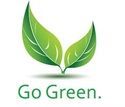 If you opt to go green this year, there may be tax breaks available.