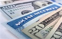 Social Security Tapped More in Downturn