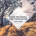 Four Fed Hikes, One Year Later