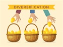 Undervaluing Diversification