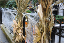 Six tips to keep trick-or-treaters safe on Halloween