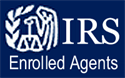 Who Can Represent You Before the IRS?