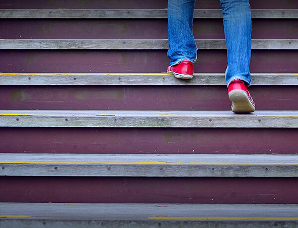 <p>Disability Income</p>