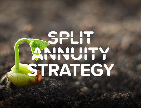 <p>Split Annuity Strategy</p>