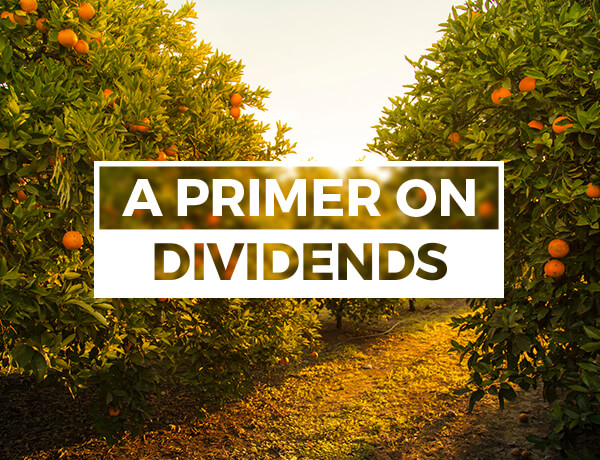 <p>A Primer on Dividends</p>