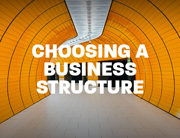 <p>Choosing a Business Structure</p>