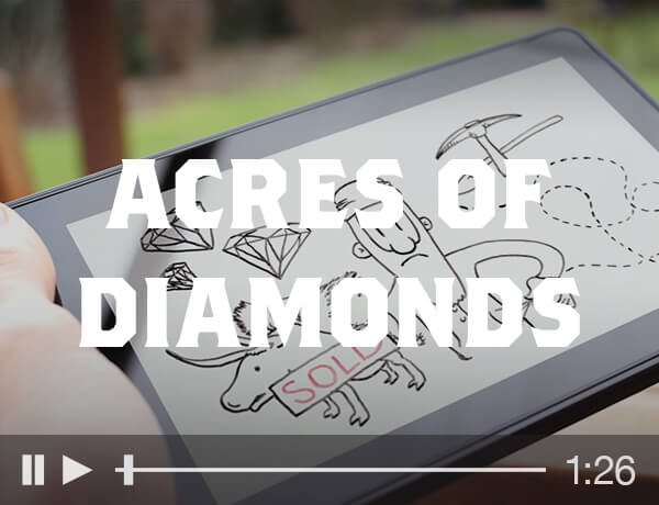 <p>Acres of Diamonds</p>
