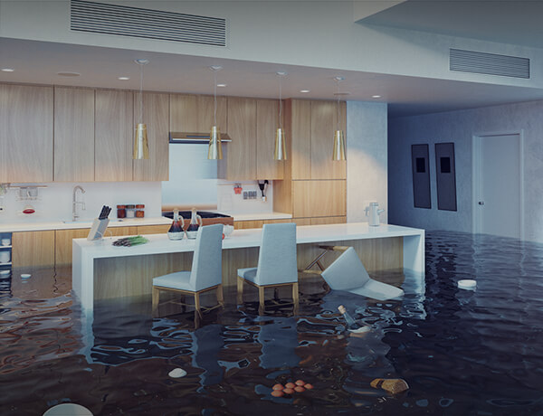 <p>Protecting Your Home Against Flood Loss</p>