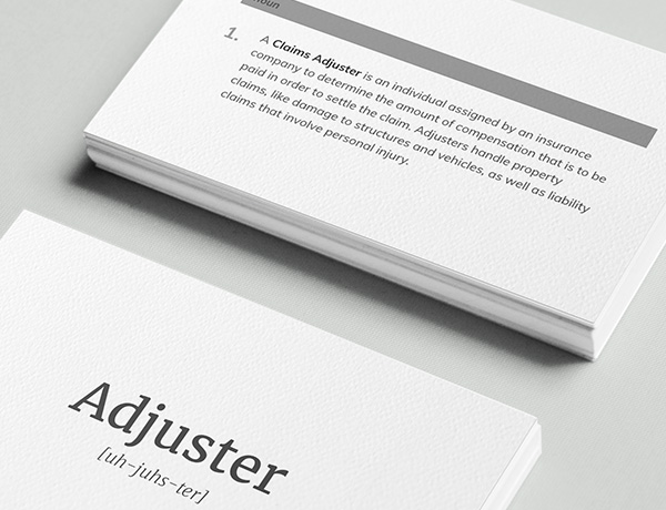 <p>What is an Adjuster?</p>