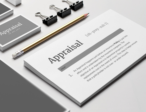 <p>What is an Appraisal?</p>